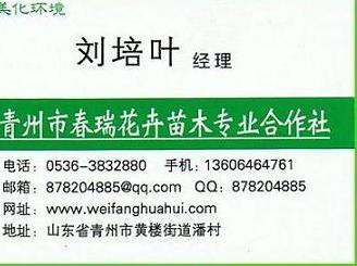 【点击查看】山东青州五色草造型,山东立体花坛设计施工,青州立体园艺造型